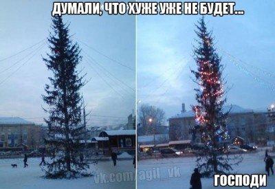Елка полиняла - облинявшая елка.jpg