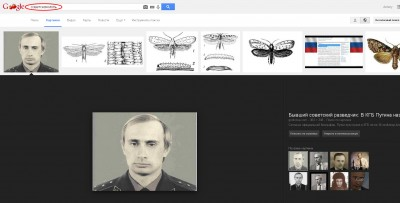 Владимир Путин - Советская моль - mol_sovetskaya.jpg