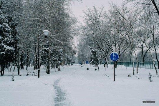 Новости, фото и видео из Краматорска, как живет город - Kramatorsk-Sad-Bernatskogo (1).jpg